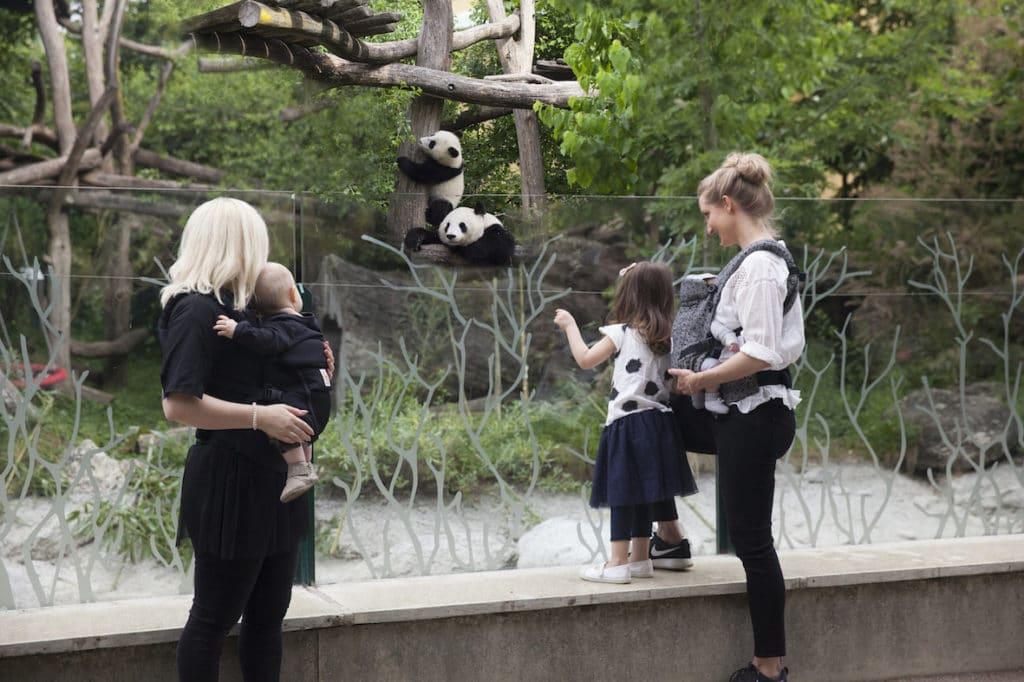Wien Cityguide für Familien: Die neuen Reisetipps sind da!
