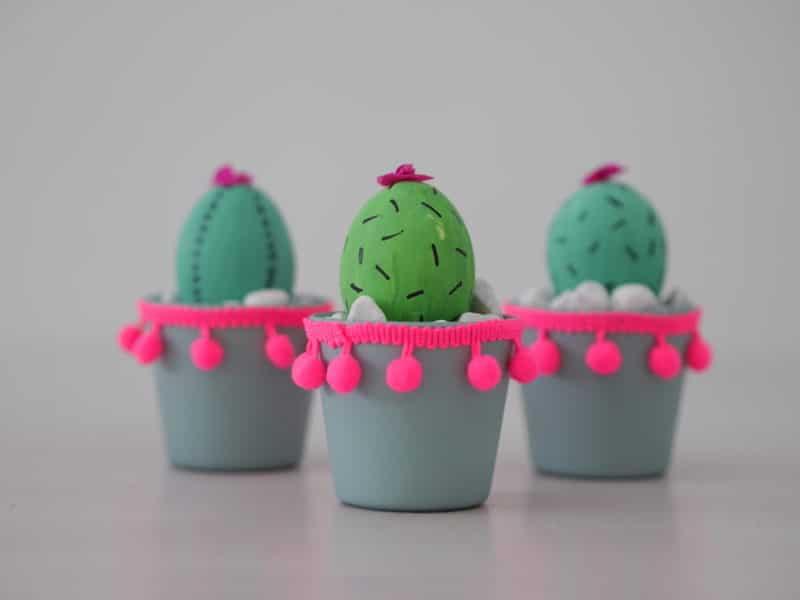 ostereier kaktus
